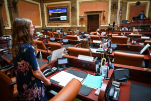 Elementary school students participating in a mock legislative session